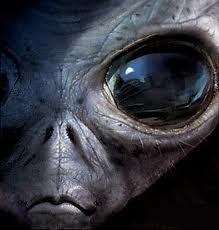 The Detailed Universe, Area 51 & Gray Aliens