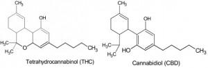 THC & CBD_molecule